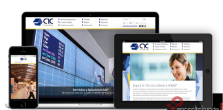 c1cconsulting